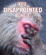 BONGO'S UPSET YOU TURD!